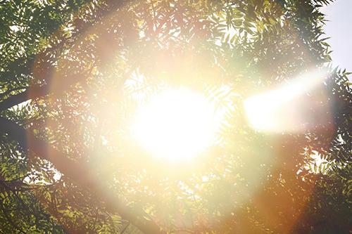 シミ対策 ~紫外線の影響と正しいUVケア方法~