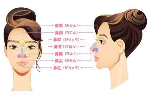 【お悩み別!鼻の整形治療】まずは鼻のパーツの名称を知ろう