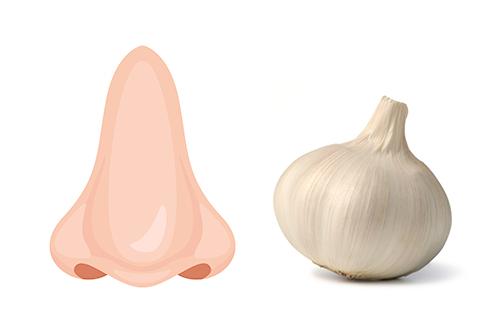 団子鼻のイメージ