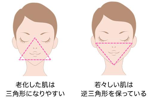 老化した肌は三角形になりやすい_若々しい肌は逆三角形を保っている